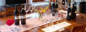 Casanuova delle Cerbaie - Wine Tasting Notes