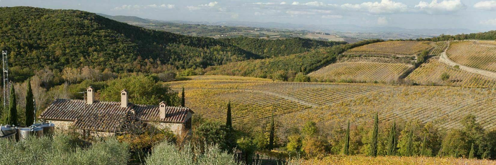 Casanuova delle Cerbaie - Winery