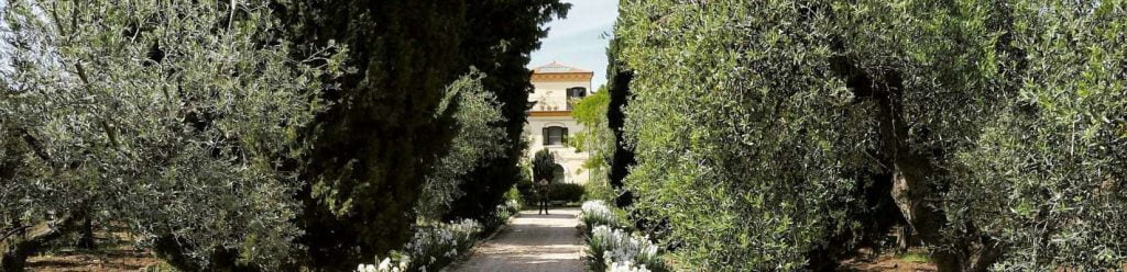 Marina Colonna Estate - Extra Virgin Olive Oil