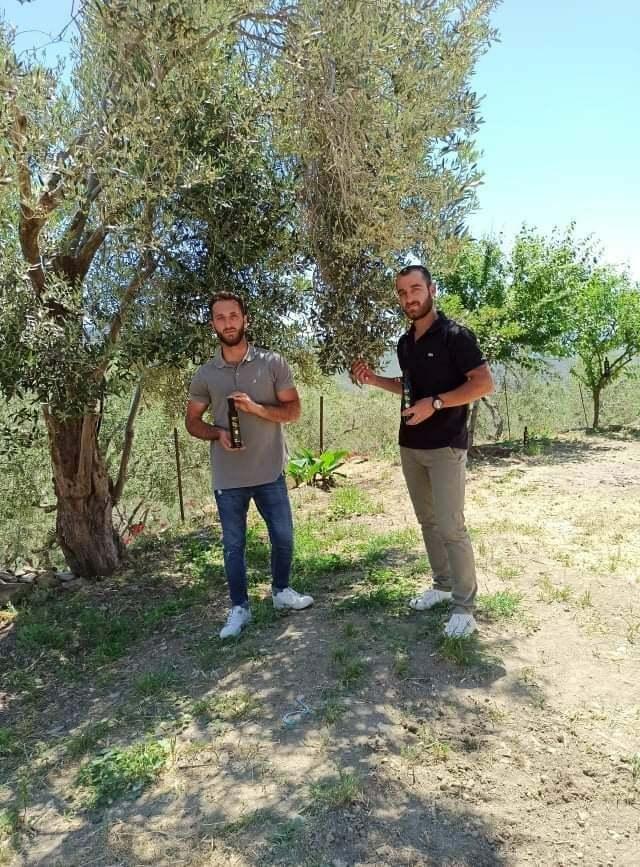 Lesvion - Giakalis Family Olive Grove - Lesvos Greece