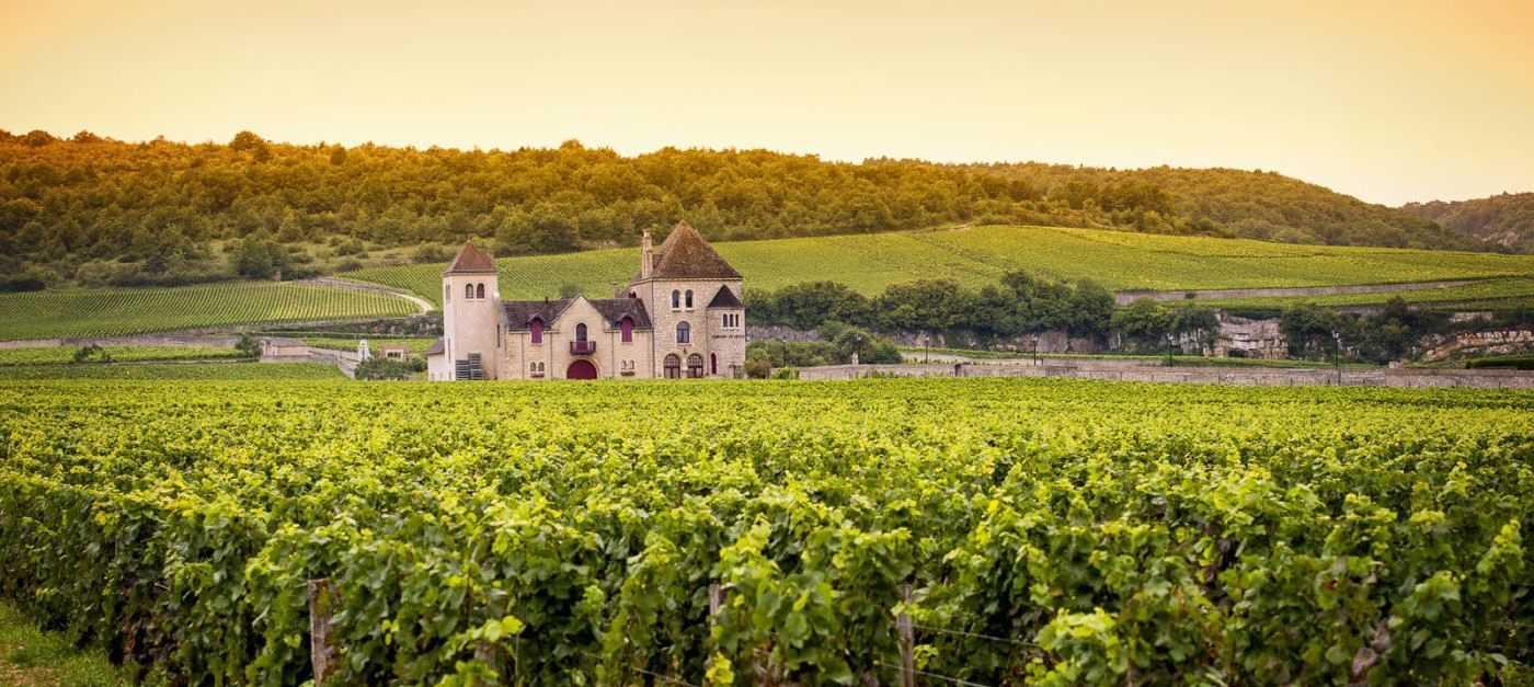Burgundy Wine Region - The Good Gourmet
