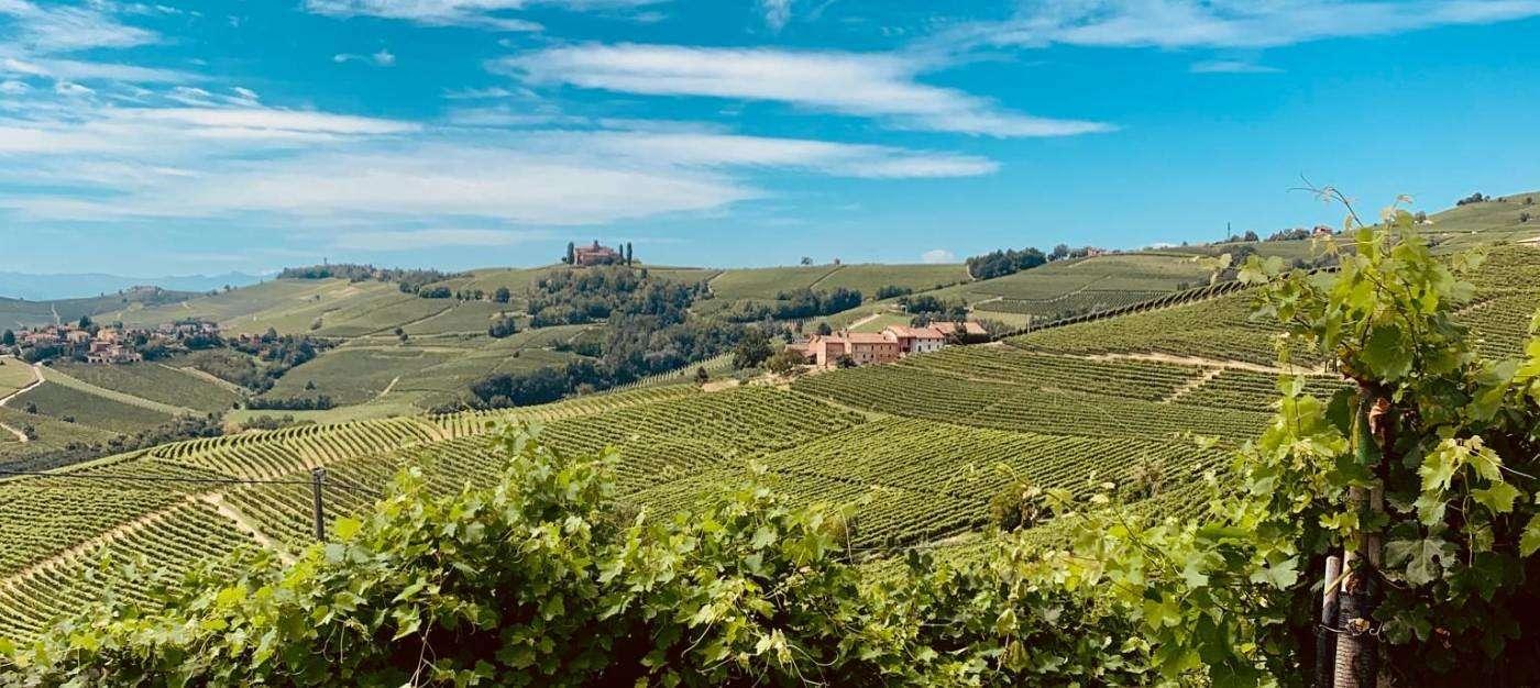 Langhe wine region - The Good Gourmet